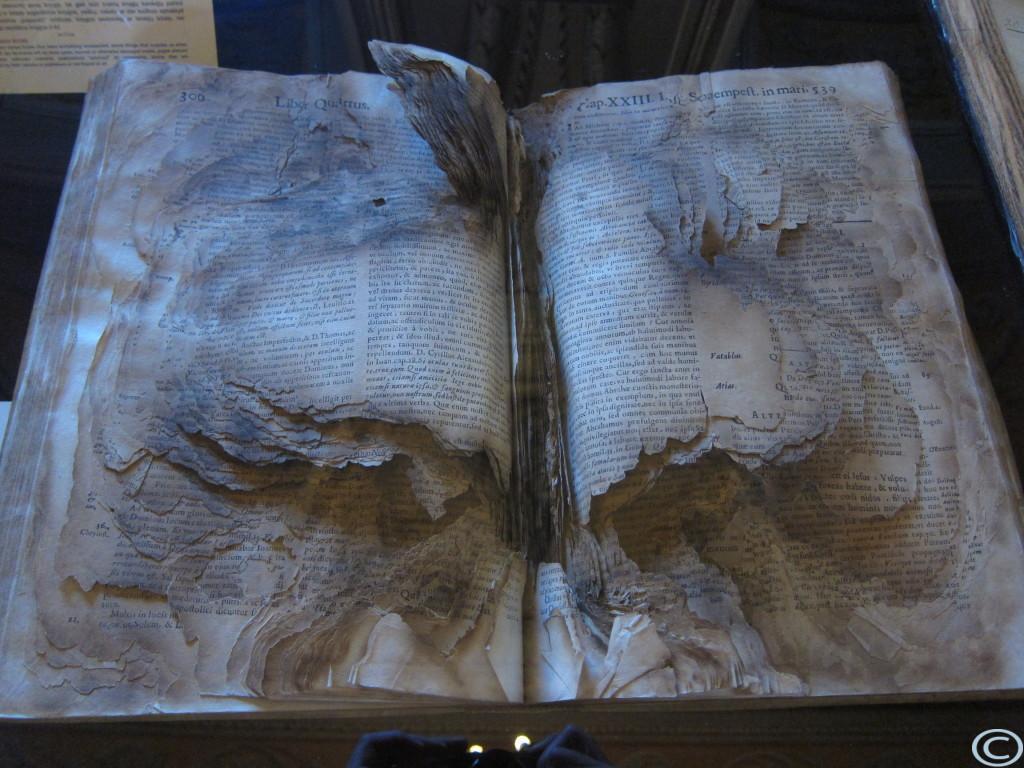 """Dieses Buch hat einen Brand """"ueberlebt"""" - Innen verbrannt, aussen unversehrt."""
